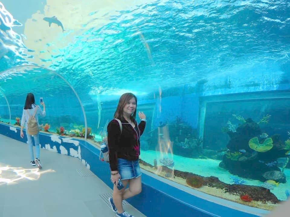Cebu Ocean Park Deep Lagoon View