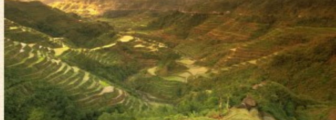 top destinations in the philippines banaue rice terraces
